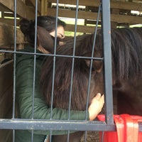 Photo taken at Blowing rock equestrian center by Christina R. on 4/24/2016