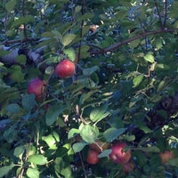 Photo taken at Honey Pot Hill Orchards by Marybeth C. on 10/7/2012