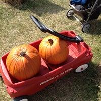 Photo taken at Pumpkin patch by Kornel R. on 10/19/2014