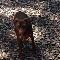Photo taken at Happy Valley Dog Park by Nancy R. on 5/13/2014