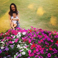 Photo taken at Thai Pavilion by nuugo on 2/1/2014