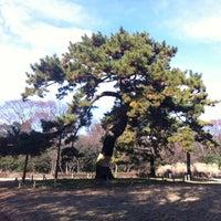Photo taken at Yoyogi Park by Liliana B. on 12/24/2012