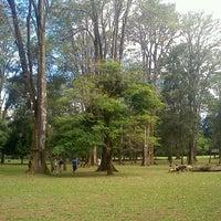 Photo taken at Parque del Este by Marko M. on 1/6/2013