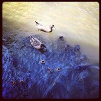 Photo taken at Rock Creek Marina by Matias C. on 10/14/2012