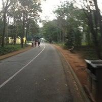 6/16/2013にHélia A.がCircuito das Árvoresで撮った写真