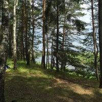 Photo taken at пос. Якшуново by Дмитрий З. on 6/18/2016