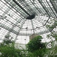 Das Foto wurde bei Botanisches Museum von Torsten B. am 2/17/2013 aufgenommen