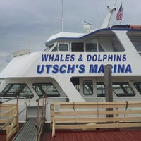 Photo taken at Cape May Whale and Dolphin Watch and Research Center by Morgan on 8/6/2013