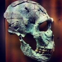 Foto tirada no(a) Institut de Paléontologie Humaine por juan_nikolaevic S. em 12/14/2012