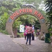 Photo taken at Taman Safari Indonesia II by joko s. on 3/31/2013