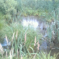 Photo taken at пруд в поле by Evgeny B. on 7/6/2013