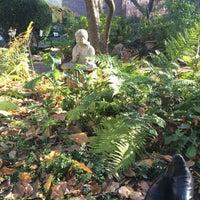 Foto scattata a Clinton Community Garden da Chris G. il 11/15/2015