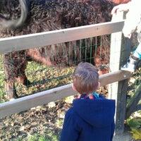 Photo taken at Kinderboerderij NME-centrum De Elzenhoek by Sjack E. on 11/11/2012