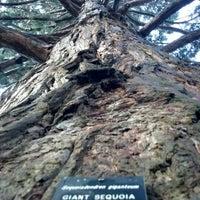 Photo taken at Washington Park by Kyle E. on 11/21/2012
