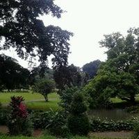 Photo taken at Bogor Botanical Gardens by 'sarah A. on 12/20/2012