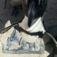 Das Foto wurde bei Tierpark EuregioZoo von David B. am 4/18/2013 aufgenommen
