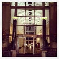 harn museum  art  tips   visitors