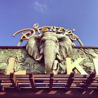 Photo taken at Disney's Animal Kingdom by Ivan P. on 3/19/2013