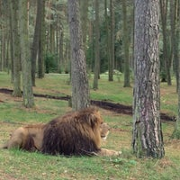 Photo taken at Serengeti Park by Викуля on 10/14/2012