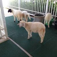 Photo taken at Dairy Hut Farm & Restaurant by Natalia K. on 5/3/2014