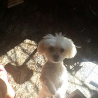 Photo taken at Planet Dog Resort by Berna S. on 1/11/2014