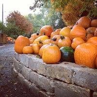 Photo taken at Vala's Pumpkin Patch by Ryan D. on 10/13/2012