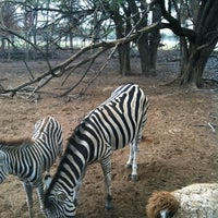 Photo taken at Sharkarosa Wildlife Ranch by Sean D. on 9/16/2012