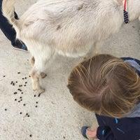 Photo taken at Lambs Farm by Raffaella B. on 10/15/2015