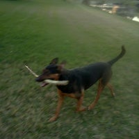 Photo taken at manjuck manor dog park by QueenMaureen on 2/21/2013