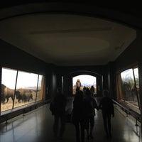 Photo prise au Hall of North American Mammals par Jorge A. le10/12/2017