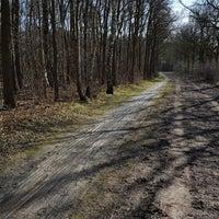 Photo prise au Nationaal Park Drents-Friese Wold par Dennis F. le3/18/2018