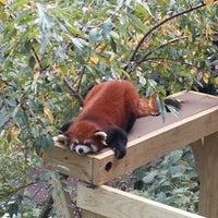Photo taken at Roger Williams Park Zoo by John U. on 10/6/2012