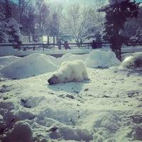 Photo taken at Polar Bear Museum by nanao on 12/25/2012