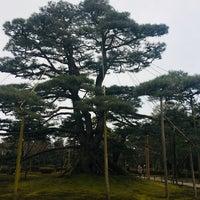 Photo taken at Neagarinomatsu Pine by Taka I. on 12/30/2017