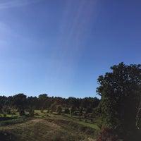 Photo taken at Bedgebury National Pinetum by Joe S. on 9/11/2016