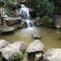 Photo taken at Jardim Oriental by Claudia R. on 11/4/2012