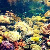 Photo taken at Tropicarium by Kroky on 7/24/2014