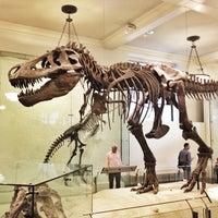 Foto tomada en Museo Americano de Historia Natural por Jenn el 10/14/2013
