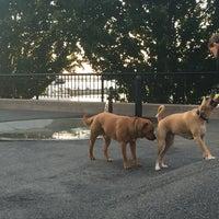 Photo taken at Sirius Dog Run by Jenn on 7/6/2016