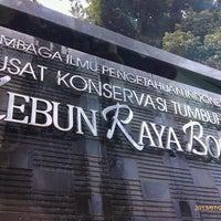 Photo taken at Bogor Botanical Gardens by Adiya Purnama F. on 7/29/2013