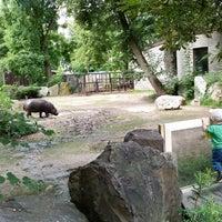 Photo taken at Ogród Zoologiczny by Łukasz L. on 8/6/2014