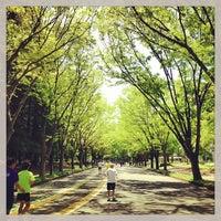 Das Foto wurde bei Komazawa Olympic Park von Masa T. am 4/27/2013 aufgenommen