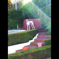 Photo taken at Bellevue Hill by Lindy S. on 3/26/2015