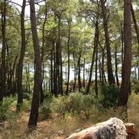 8/23/2013 tarihinde Tarkan D.ziyaretçi tarafından Çınar Plajı'de çekilen fotoğraf