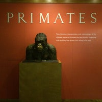 Photo taken at Hall Of Primates by Francisco R. on 9/17/2015