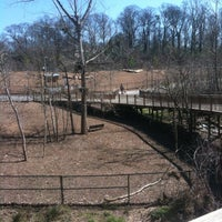 รูปภาพถ่ายที่ Piedmont Park Dog Park โดย Josh W. เมื่อ 3/7/2013