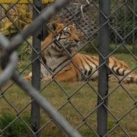 Photo taken at Tiger Truckstop by Tim P. on 12/31/2012