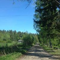 Photo taken at Научно Опытная Станция Ботанического Сада by Sergei K. on 5/20/2013