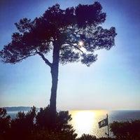 8/6/2015にBio V.がTorre di Cala Piccola Hotel Monte Argentarioで撮った写真