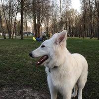 """Photo taken at Парк-отель """"Белые аллеи"""" by Элла У. on 4/30/2017"""